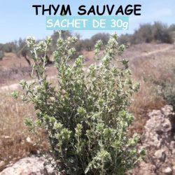 الزعيترة  Feuilles de Thym sauvage - 30g