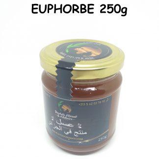 Miel d'Euphorbe (Loubayna) 2021 - 250 gr